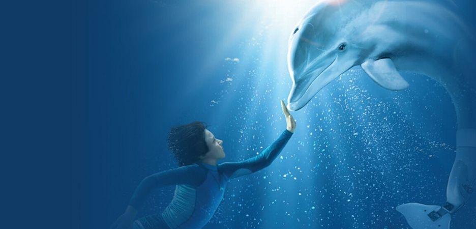 Zacznijmy od przyjaźni z delfinem